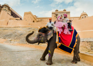 best-hindu-Gujrati-Wedding-photographer-north-america