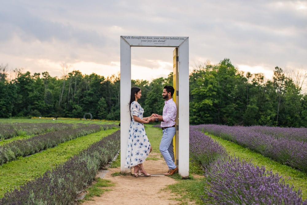 Terre Bleu Lavender Farms, Toronto engagement shoot
